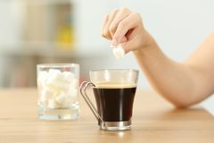 Woman hand throwing sugar cube into a coffee mug. Close up of a woman hand throwing sugar cube into a coffee mug on a table at home Stock Photography