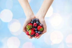 Close up of woman hands holding berries. Healthy eating, dieting, vegetarian food and people concept - close up of woman hands holding different ripe summer Royalty Free Stock Photography