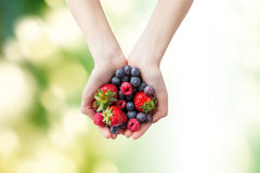 Close up of woman hands holding berries. Healthy eating, dieting, vegetarian food and people concept - close up of woman hands holding different ripe summer Stock Image