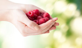 Close up of woman hands holding raspberries. Healthy eating, dieting, vegetarian food and people concept - close up of woman hands holding raspberries over green Royalty Free Stock Photos