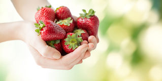 Close up of woman hands holding strawberries Stock Image