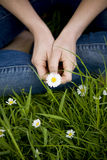 Close-up of a woman holding a daisy Royalty Free Stock Photo