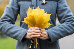 Close-up of a woman holding fallen leaves Stock Photo