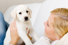 Close up of woman holding white puppy Royalty Free Stock Photos