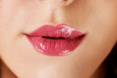 Close up of woman lips. Stock Photography