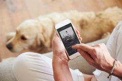 Close Up Of Woman Listening To Music Smartphone At Home Royalty Free Stock Photos