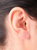 Close-up woman's ear. Shape of the ear repeats  figure the baby in the womb Stock Images