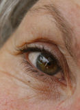 Close-up of woman's eye. A close up of a middle aged woman's hazel brown eye Stock Photography