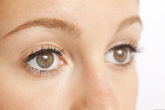 Close up of woman's eyes Stock Images