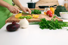 Close up of woman`s hands cooking in the kitchen. Housewife slicing fresh salad. Stock Image