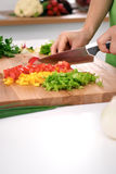 Close up of woman`s hands cooking in the kitchen. Housewife slicing fresh salad. Stock Photo