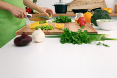 Close up of woman`s hands cooking in the kitchen. Housewife slicing fresh salad. Vegetarian and healthily cooking. Concept Stock Photography