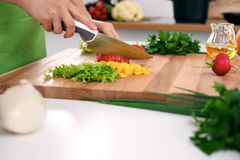 Close up of woman`s hands cooking in the kitchen. Housewife slicing fresh salad. Vegetarian and healthily cooking. Concept Royalty Free Stock Photography