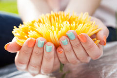 Close Up Of Woman's Hands On Flower Stock Photos