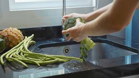 Close-up woman`s hands washing broccoli at domestic kitchen royalty free stock image