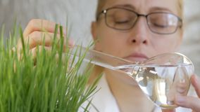 Close-up of a woman scientist looking at the contents of a glass flask with a clear liquid next to the growing green. Close-up of a woman scientist`s face in a stock video