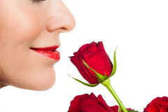 Close-up woman smelling a rose. Close-up profile shot of a beautiful woman smelling a rose. Isolated on white royalty free stock photos