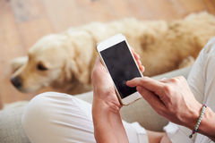 Close Up Of Woman Using Smartphone At Home Royalty Free Stock Photos