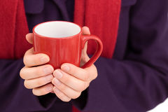 Close up of a woman in warm clothing holding mug Royalty Free Stock Image