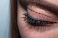 close up of womans brown eye lid with false eye lashes stock images