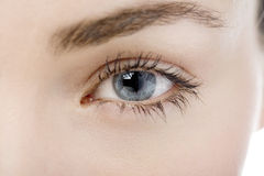 Close Up of a womans eye Stock Images