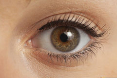 Close up of woman's eye Royalty Free Stock Photography