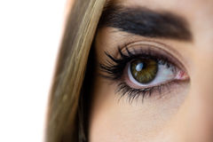 Close-up of a womans eye Stock Photography