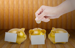 Women hands putting coin into three gold piggy bank with a Post-it taped on Wooden floor. Close up women hands putting coin into three gold piggy bank with a Royalty Free Stock Image