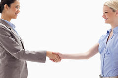 Close-up of women shaking hands. Against white background Stock Photo
