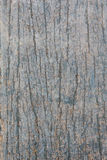 Old wood. Close up of wood exture as frunge background Stock Photo