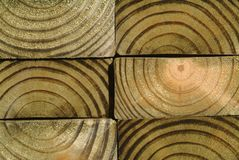 Close up of wood grain Stock Photos