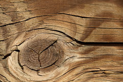 Close up of wood pattern Royalty Free Stock Images