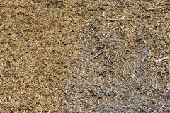 Close-up of wood shavings Royalty Free Stock Images