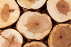 Close up of wood slices Royalty Free Stock Photography