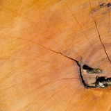 Close-up Wood Texture Background Stock Images