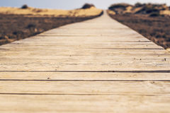 Close-up of wooden beach boardwalk path Stock Image
