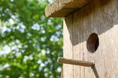 Birdhouse with hole and landing peg. Close-up of wooden birdhouse with hole and landing peg against a blurred green background royalty free stock image