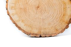 Close-up wooden cut texture Stock Images