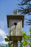 Close up wooden hand made birdhouse in colorful blue sky. Close up wooden hand made birdhouse in colorful blue sky with green plant leaves and trees in the royalty free stock images