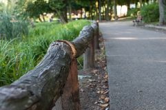 Close-up of wooden handrail at park royalty free stock photography