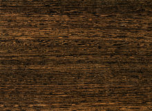 Close-up wooden Live oak texture Stock Image