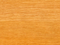 Close-up wooden oak texture Royalty Free Stock Image