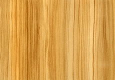 Close-up wooden Olive texture Stock Images