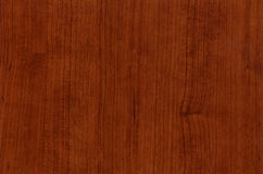 Close-up wooden Pensylwania Cherry texture Stock Images