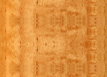Close-up wooden Sandy Birch texture Royalty Free Stock Photos