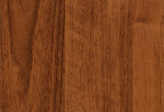 Close-up wooden Walnut texture Royalty Free Stock Photography