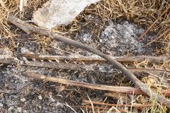 Woodpile and ash on the ground. Close up woodpile and ash on the ground stock photo
