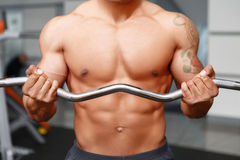 Close up workout of weightlifter Royalty Free Stock Image