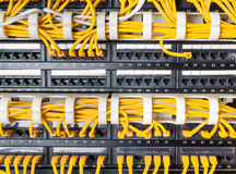 Close up of yellow network cables connected to switch Stock Images
