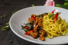 Close up Yellow noodles stir fried pork is worth tasting menu.Thai style food. Royalty Free Stock Images